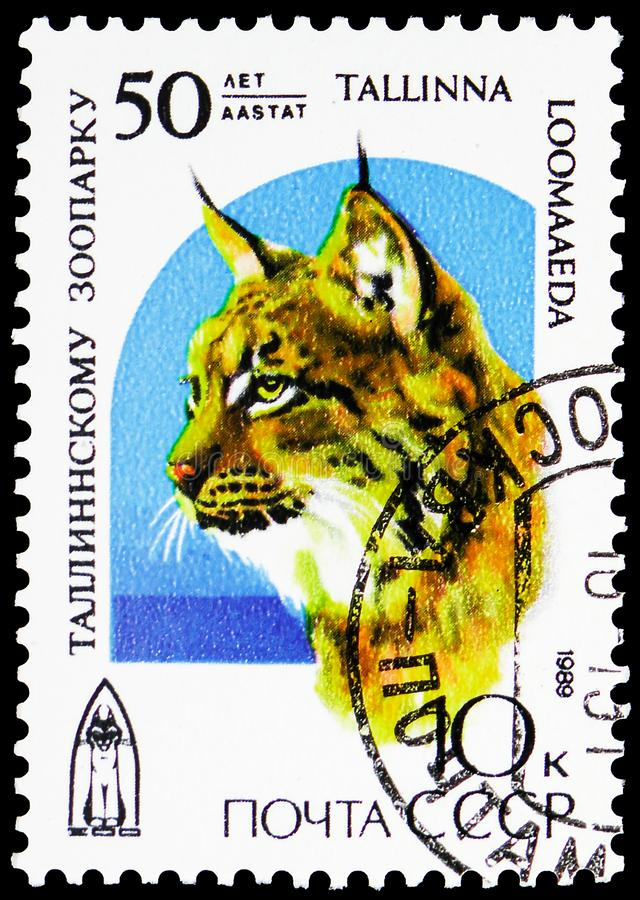 Eurasian Lynx Lynx lynx, Talin Zoo, 50th Anniversary serie, circa 1989. MOSCOW, RUSSIA - MAY 25, 2019: Postage stamp printed in Soviet Union shows Eurasian Lynx stock image