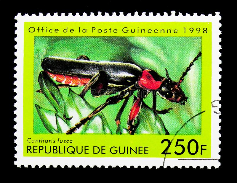 Soldier Beetle (Cantharis fusca), Insect serie, circa 1998. MOSCOW, RUSSIA - NOVEMBER 26, 2017: A stamp printed in Guinea shows Soldier Beetle ( stock photo