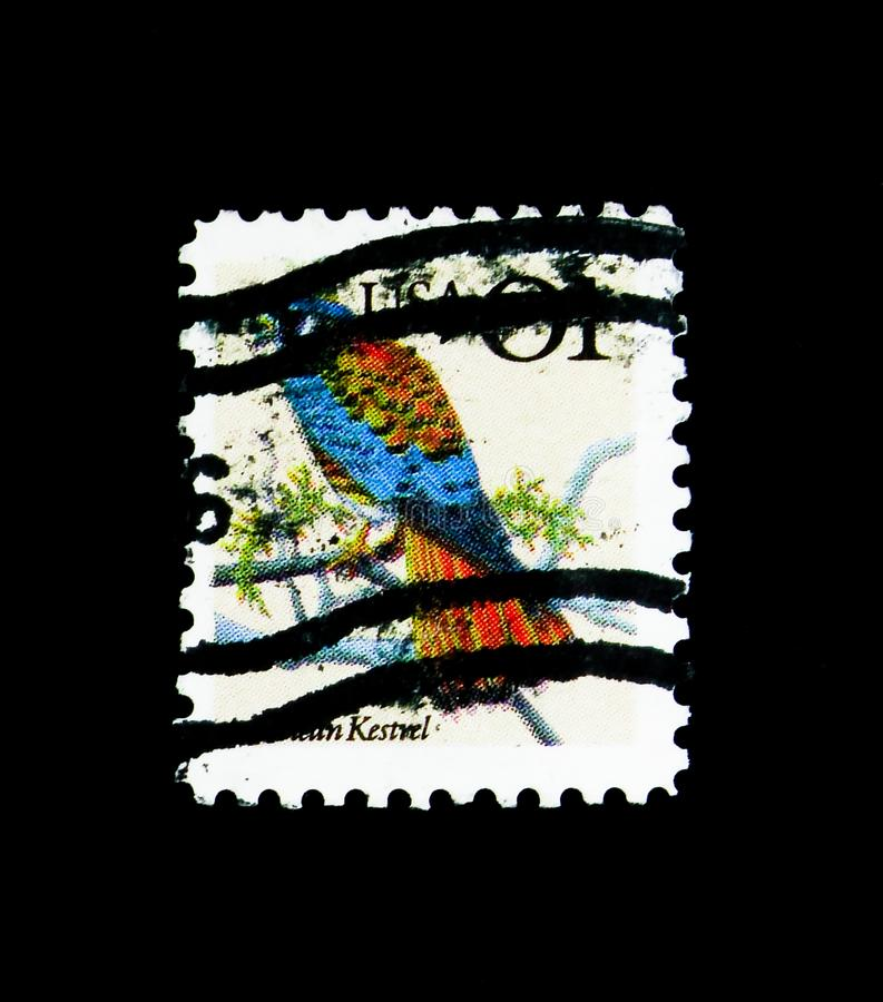 American Kestrel Falco sparverius, Flora and Fauna Issue serie, circa 1991. MOSCOW, RUSSIA - NOVEMBER 24, 2017: A stamp printed in USA shows American Kestrel royalty free stock photos