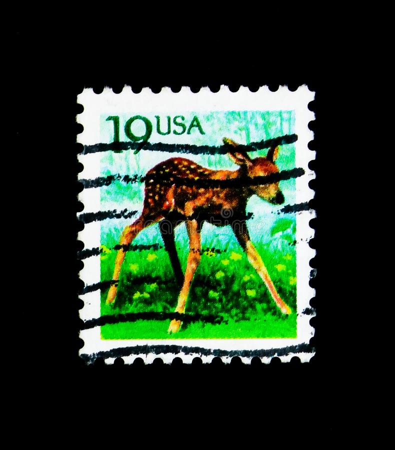 Roe Deer Capreolus capreolus Juvenile, Flora and Fauna Issue serie, circa 1991. MOSCOW, RUSSIA - NOVEMBER 24, 2017: A stamp printed in USA shows Roe Deer royalty free stock images