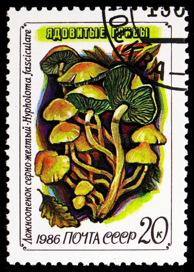 Sulphur tuft (Hypholoma fasciculare), Mushrooms serie, circa 1986. MOSCOW, RUSSIA - NOVEMBER 10, 2018: A stamp printed in USSR (Russia) shows Sulphur tuft ( stock image