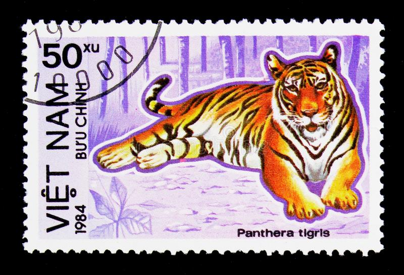 Tiger (Panthera tigris), Endangered Animals serie, circa 1984. MOSCOW, RUSSIA - NOVEMBER 26, 2017: A stamp printed in Vietnam shows Tiger (Panthera tigris) royalty free stock image
