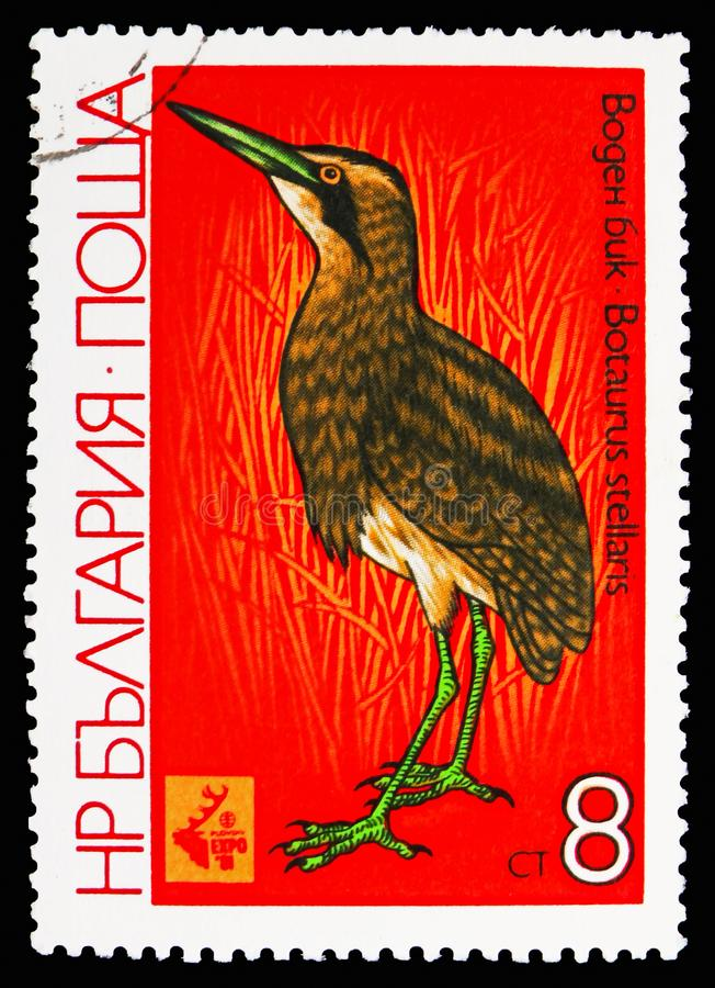 Great Bittern (Botaurus stellaris), International Hunting Exhibition EXPO '81, Plovdiv: Waders serie, circa 1981. MOSCOW, RUSSIA - OCTOBER 21, 2018: A stamp royalty free stock photos