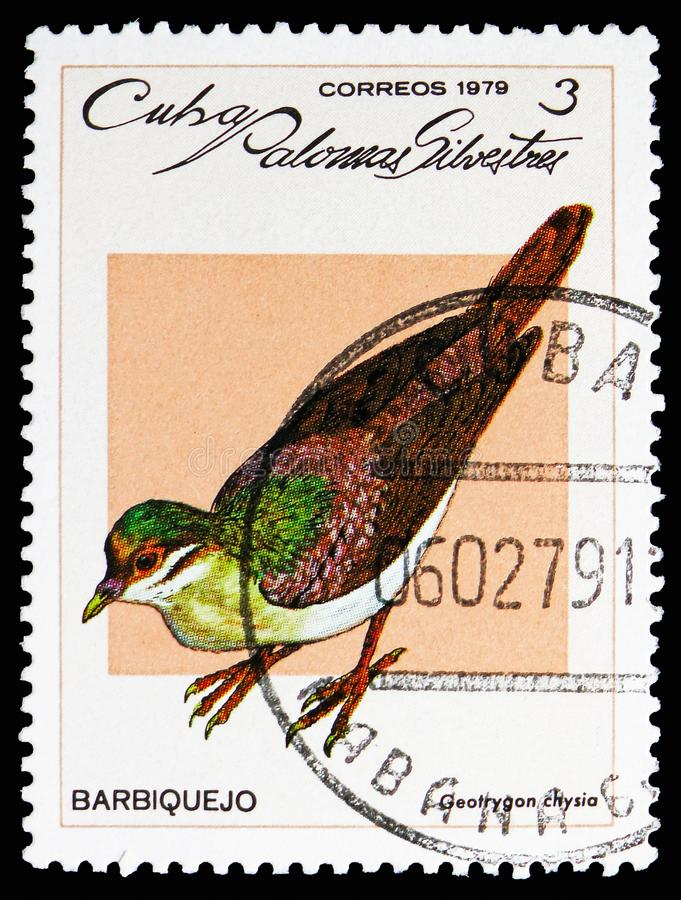 Key West Quail-dove (Geotrygon chrysia), Wild pigeons serie, circa 1979. MOSCOW, RUSSIA - OCTOBER 21, 2018: A stamp printed in Cuba shows Key West Quail-dove ( royalty free stock photo