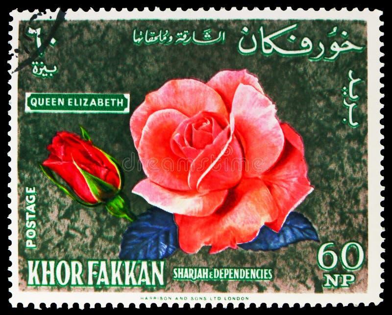 Postage stamp printed in Sharjah (United Arab Emirates) shows Silvery pink floribunda rose. MOSCOW, RUSSIA - SEPTEMBER 30, 2019: Postage stamp printed in stock photo