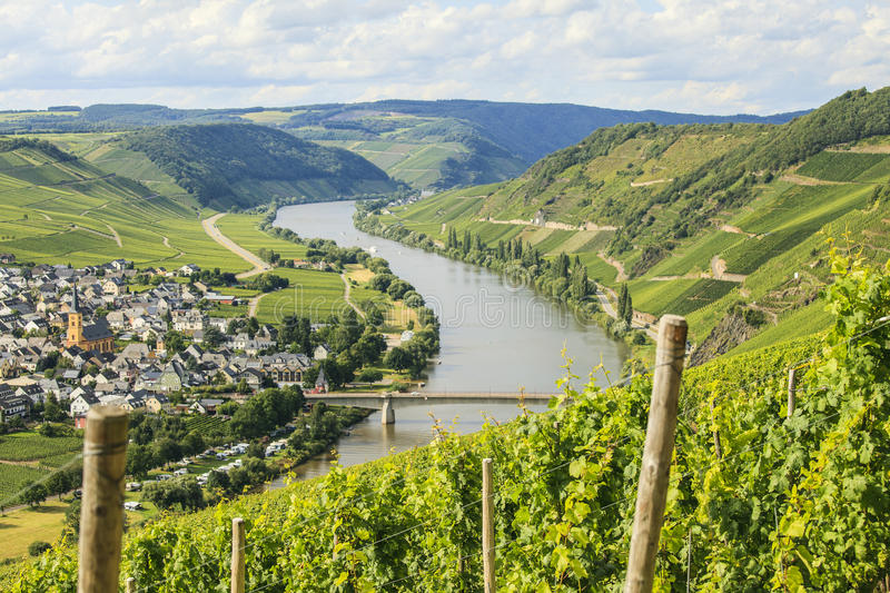 Mosel area royalty free stock photography