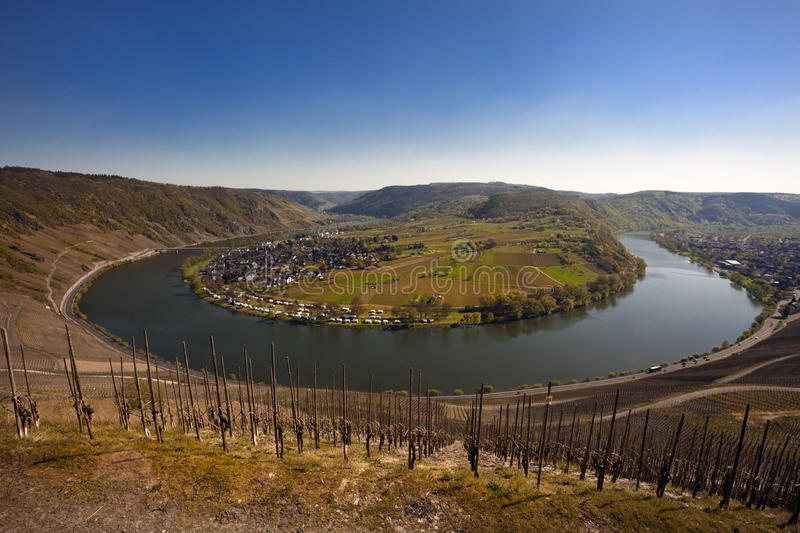 Download The Mosel valley near Kröv stock photo. Image of winding - 14052288