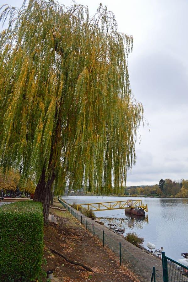 Moselle brzeg rzeki przy Remich obrazy stock