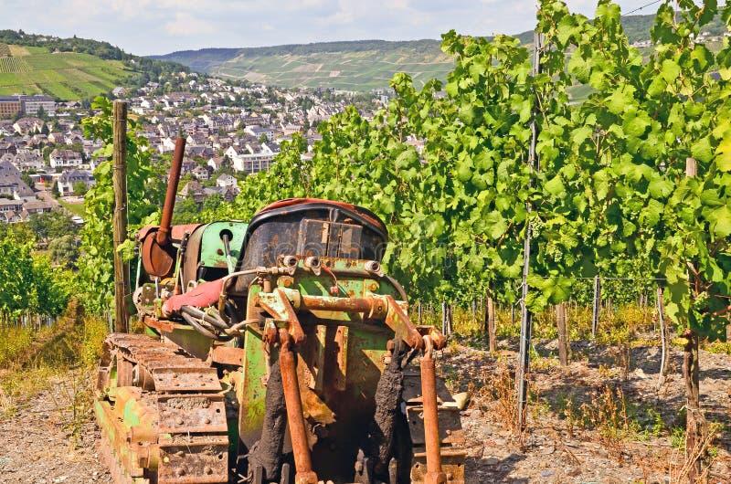 Moselle dolina - Niemcy: Widok winnicy blisko miasteczka Bernkastel Kues obrazy royalty free