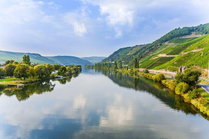 Moselle dolina przy Trittenheim obraz stock