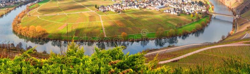 Moselle pętla przy miastem Trittenheim w Niemcy zdjęcie stock
