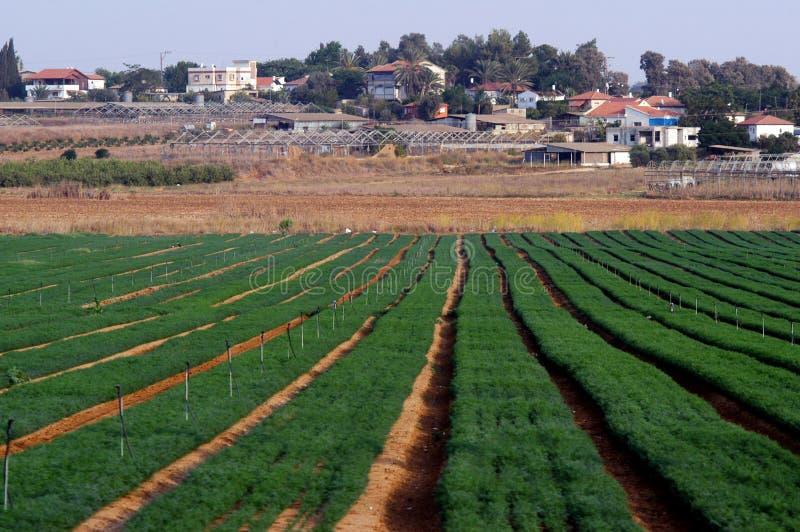 Moshav en Israël photo libre de droits