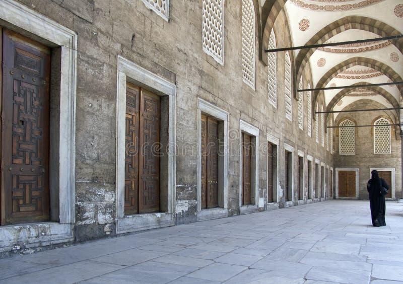 moské för 14 blue arkivfoton