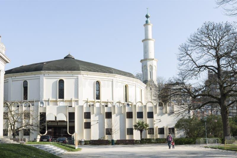 Moskén i Bryssel royaltyfria bilder