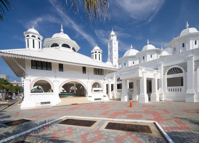 moskéwhite arkivbilder