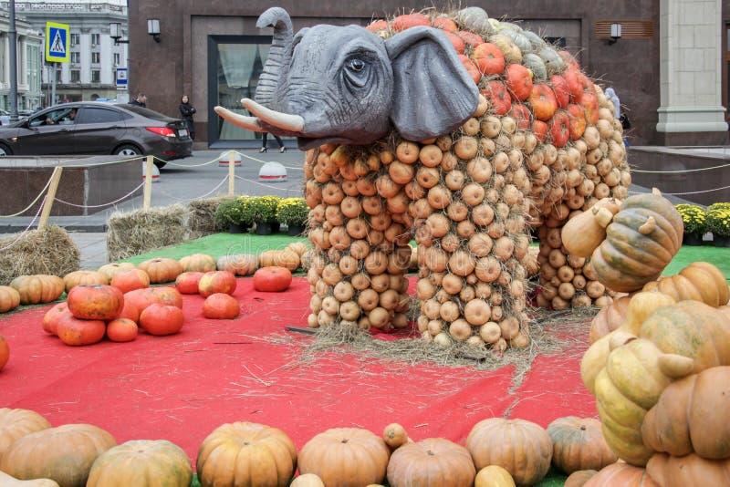 MOSKAU, RUSSLAND - 6. OKTOBER 2017: Statue eines Elefanten gemacht von vielen Kürbisen stockfoto