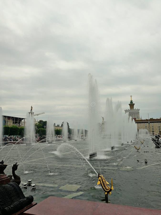 MOSKAU, RUSSLAND - 12 06 2019: Schöner Brunnen im VDNH-Park in Moskau lizenzfreie stockfotos