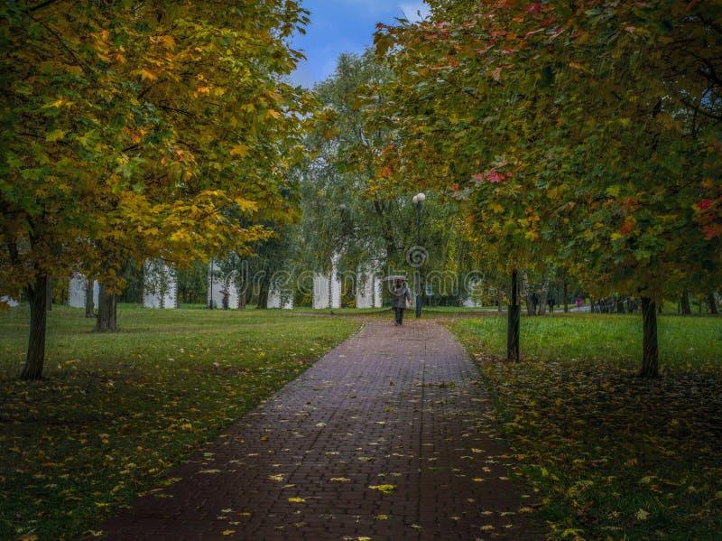 Moskiewski park 'Akwedukt' podczas deszczu zdjęcia royalty free