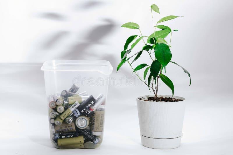 Moskou, Rusland - April 20, 2019: Een transparante container met batterijen en een het leven bloem in een pot zijn naast elkaar o royalty-vrije stock afbeeldingen