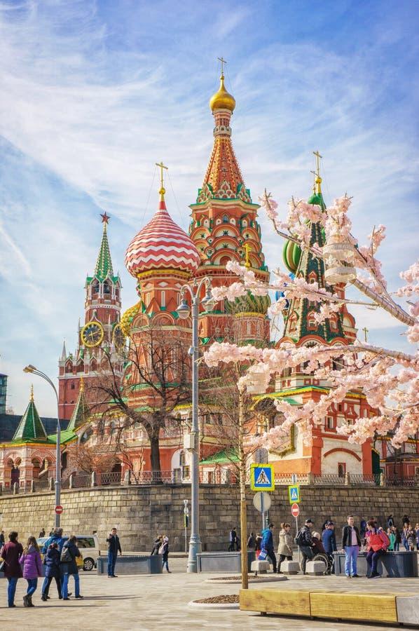 Moskou, Rusland - April 12,2018: Moskou en St Basil Cathedral bij de lentedag door bloeiende boom royalty-vrije stock afbeeldingen
