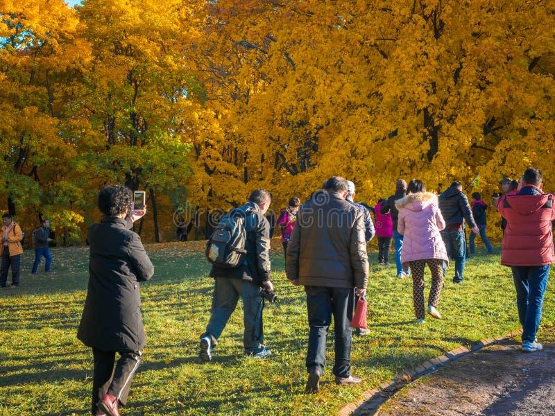 Moskva Ryssland - Oktober 11, 2018: Kinesiska turister går höst parkerar Det asiatiska folket tar bilder på bakgrunden av a royaltyfri foto