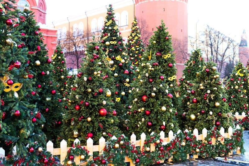 Moskvafestivalresa till jul Upplysta träd för nytt år på Manezhnaya som är fyrkantig framme av historiskt museum royaltyfri foto