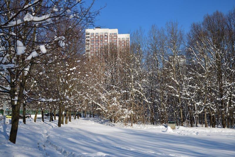 Moskwa dormitorium i park, Rosja obraz royalty free