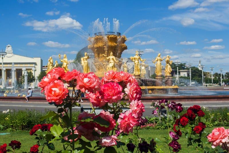 Moskwa Rosja, Czerwiec, - 24, 2019: Zaludnia przyjaźni fontannę w VDNKh parku w Moskwa zdjęcie stock