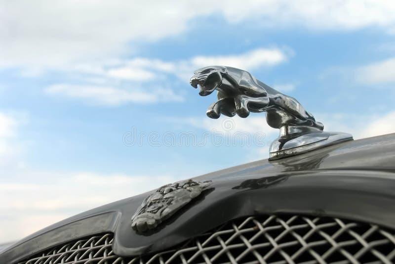 Moskwa Rosja, Maj, - 25, 2019: Grille i kapiszonu ornament sporta samochód Jaguar Jaguar w skoku przy niebieskiego nieba tłem, zdjęcie stock