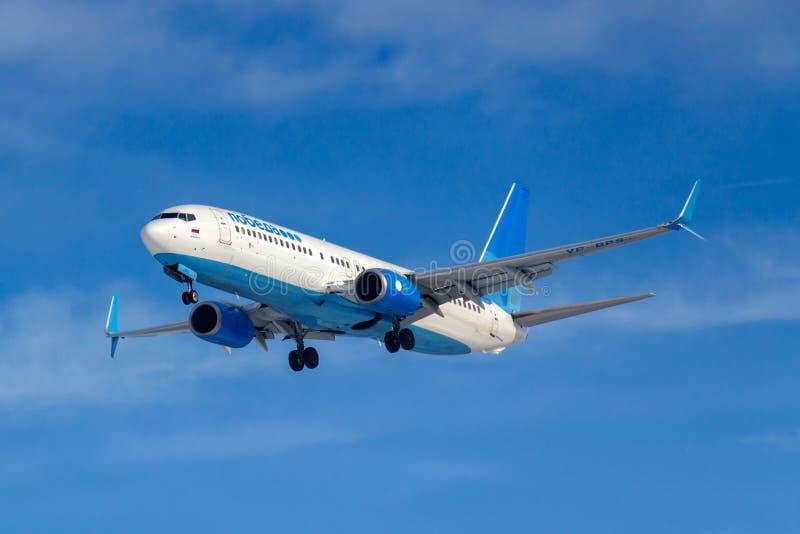 Moskwa Rosja, Marzec, - 14, 2019: Samolot Boeing 737-800 VP-BPS iść lądować dalej przy Vnukovo lotniskiem w Moskwa Pobeda Airine fotografia stock