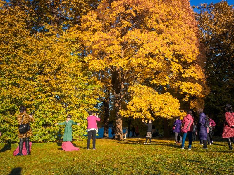 Moskwa Rosja, Październik, - 11, 2018: Chiński turystów spacerów jesieni park Azjatyccy ludzie biorą obrazki na tle a obrazy stock