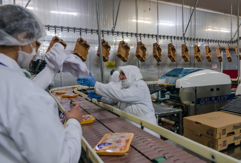 Moslemische Arbeitnehmerinnen, die in einer Hühnerfleischfabrik arbeiten lizenzfreie stockfotos