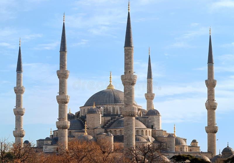 Mosquée bleue d'Istanbul, Turquie photographie stock libre de droits