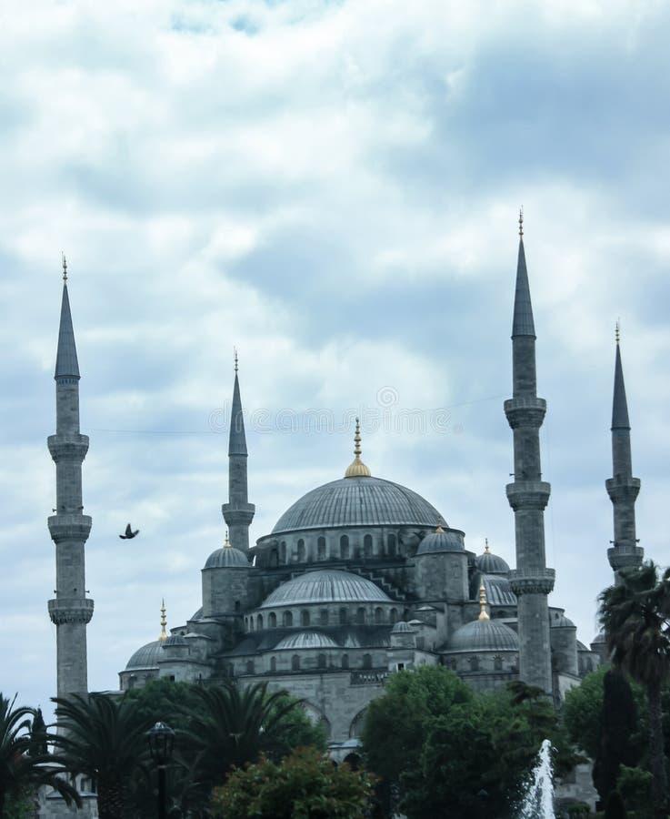 Mosquée et colombe dans un ambiant paisible à Istanbul, Turquie photo stock