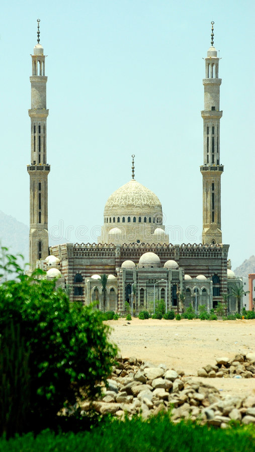 Mosque. With two towers behind bush stock photos