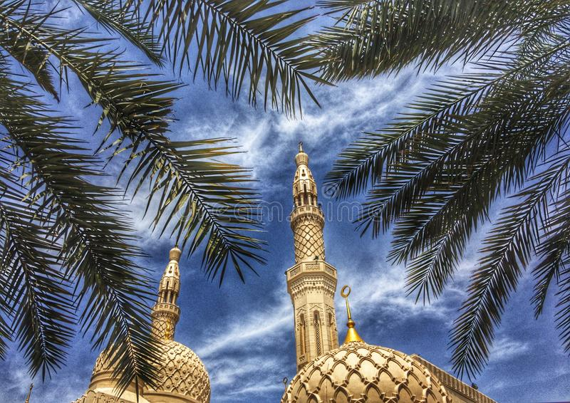 Mosque with palm tree stock photos