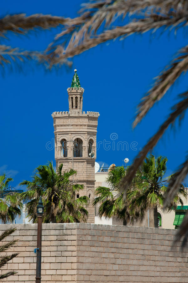 Free Mosque. Tunis Royalty Free Stock Images - 14957559