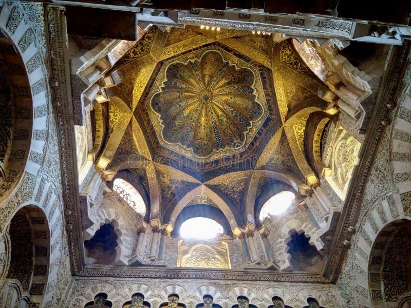 Mosquita royalty free stock photos