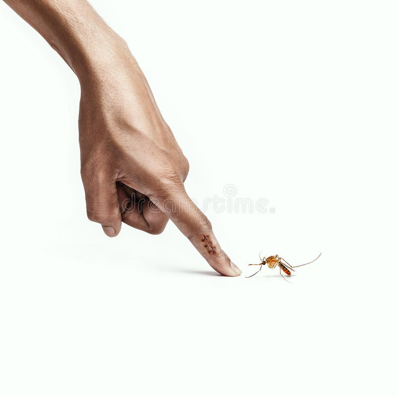 Mosquito bite on finger. Large Mosquito bite on man's finger royalty free stock photos