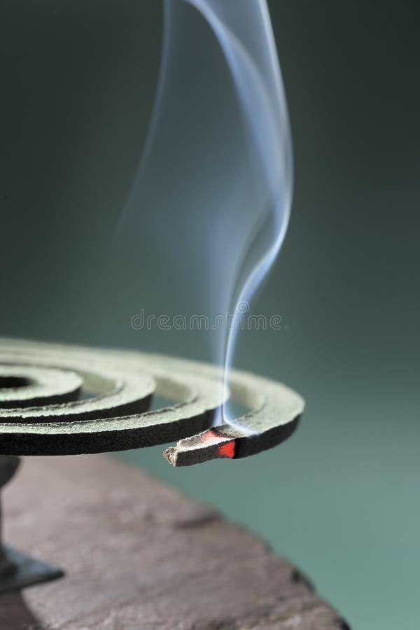 Download Mosquito Coil stock image. Image of smoke, nobody, smoking - 19556289