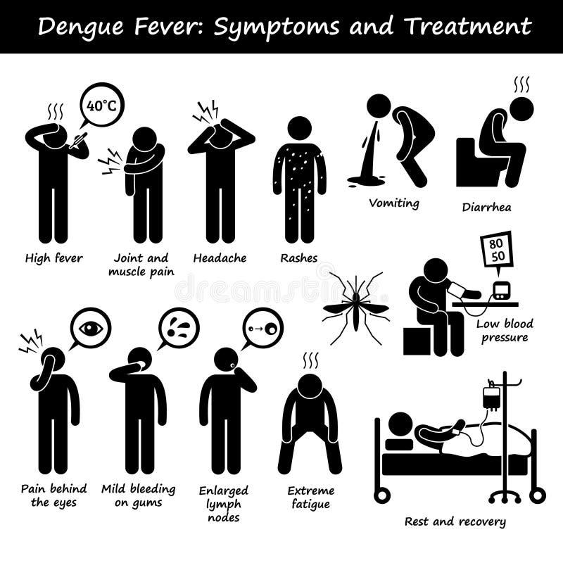 Mosquito del aedes de los síntomas y del tratamiento de la fiebre de dengue ilustración del vector