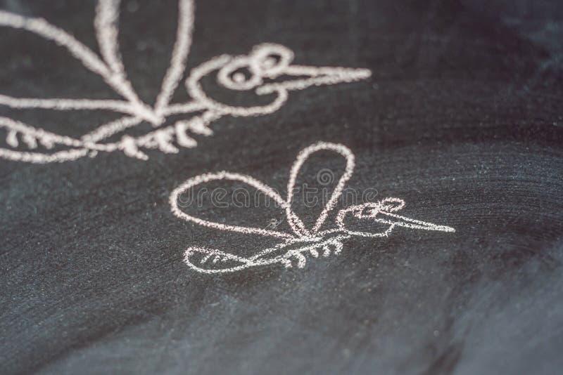 Mosquitos dibujados en la pizarra con tiza imágenes de archivo libres de regalías