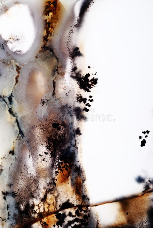 Moss Agate arkivbilder