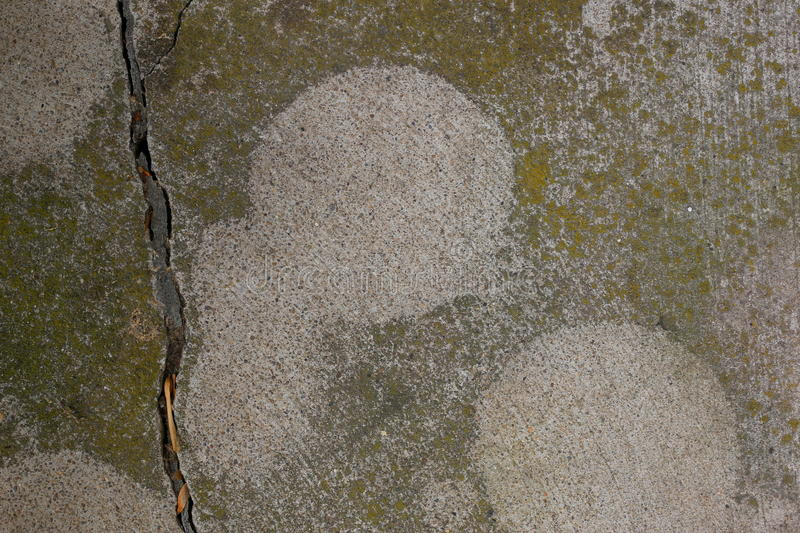 Moss Covered Cement images stock