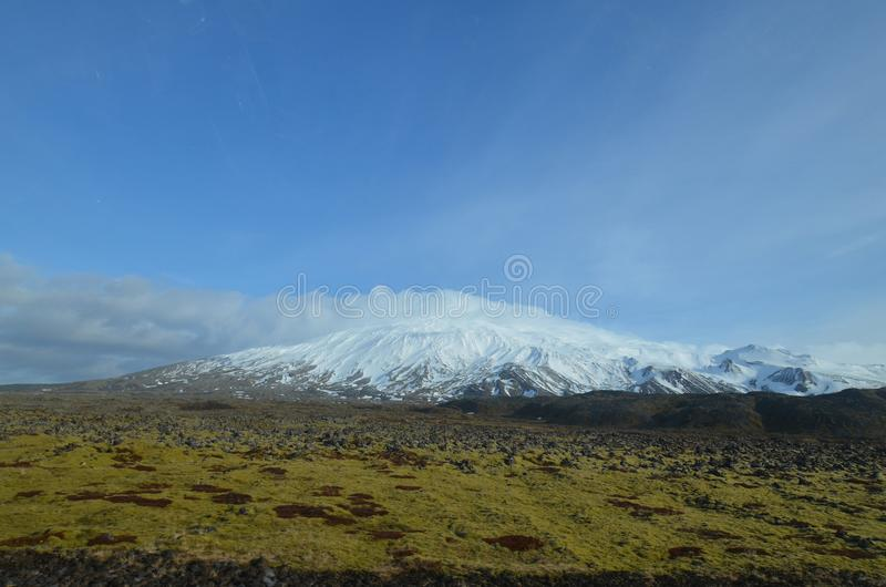 Moss Covered Lava Field In Front of Snaefellsjokull Glacier stock photo