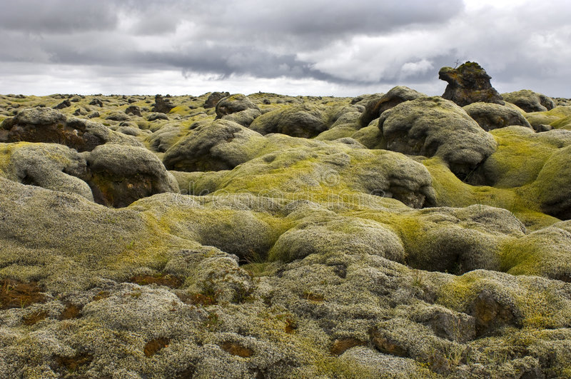 Download Moss Covered Lava Field Stock Photo - Image: 6127260