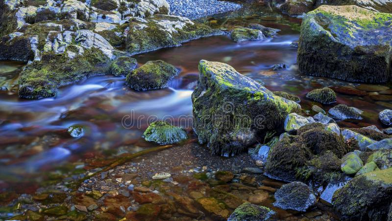 Moss covered rock in stream royalty free stock image