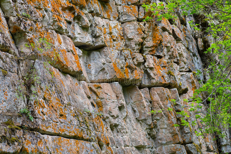 Moss Covered Rock Wall royalty free stock photography