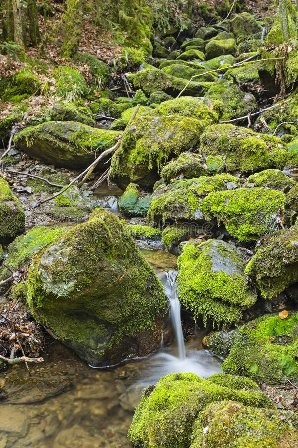 Moss Covered Rocks And Mountain flod arkivbilder