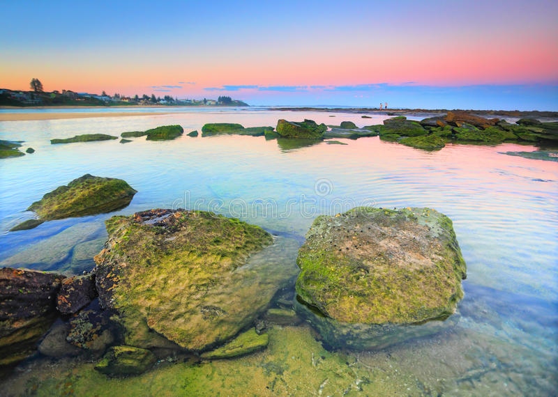 Moss covered rocks on the reef shelf, Australia. Moss covered rocks on the rocky reef shelf at teh end of Toowoon Bay, Australia at sundown stock images